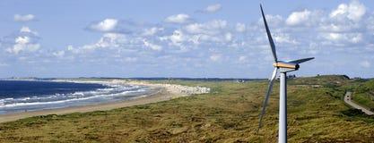 有风的海滩 免版税库存照片