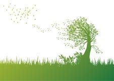 有风的结构树 免版税库存图片