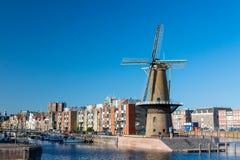 有风车的历史的Delfshaven区在鹿特丹,荷兰 南荷兰省地区 蝴蝶日草夏天晴朗的swallowtail 免版税库存照片