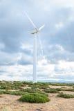 有风轮机的能源厂在开放领域背景中 库存图片
