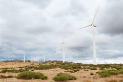 有风轮机的能源厂在开放领域背景中 图库摄影