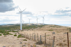 有风轮机的能源厂在开放领域背景中 免版税库存照片