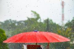 有风暴秋天雨的红色伞 免版税库存照片