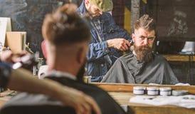 有飞剪机饰物头发的理发师在客户项  行家发型概念 得到理发的行家客户 库存图片