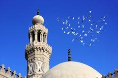 有飞行在埃及的鸟的老清真寺 免版税库存照片