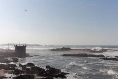 有飞行在粗砺的海岸的海鸥的堡垒 库存图片