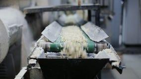 有食物生产的传送带 股票录像
