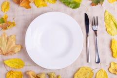 有食物设备的一块板材在与下落的叶子的秋天构成 免版税图库摄影