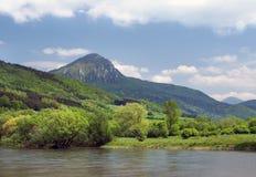 有饮者小山的Vah河在backgroung 免版税图库摄影