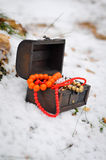 有首饰冬天童话的圣诞节不可思议的箱子 免版税库存图片