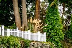 有香蒲的白色尖桩篱栅 免版税库存照片