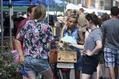 有马尾辫的女孩,佩带的短裤,以一条小狗消磨时间和她的在星期六百老汇市场上的朋友一起 库存照片