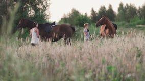 有马的两个女孩在领域 影视素材