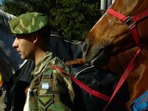 有马的军人 图库摄影