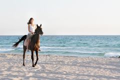 有马的愉快的妇女在海运背景 免版税库存照片