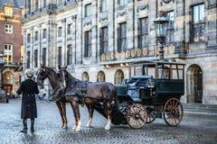 有马的支架在阿姆斯特丹中心广场  免版税库存图片