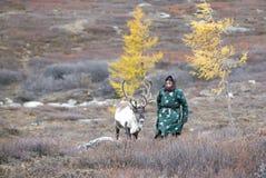 有驯鹿的Tsaatan妇女在北蒙古风景 免版税库存照片