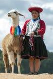 有骆马的一个秘鲁夫人在库斯科附近在秘鲁 免版税库存照片