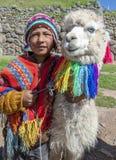 有骆马的一个秘鲁男孩在库斯科附近在秘鲁 库存照片
