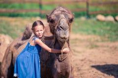 有骆驼的小女孩在动物园里在温暖和晴朗的夏日 活跃家庭休闲 免版税库存照片