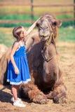 有骆驼的小女孩在动物园里在温暖和晴朗的夏日 活跃家庭休闲 图库摄影