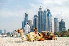 有骆驼的流浪者在反对配音的背景的海滩 库存照片