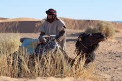 有骆驼的,摩洛哥流浪者 图库摄影
