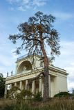 有高大的树木的阿波罗寺庙 免版税库存图片