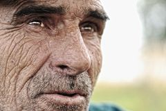 有髭的老人 免版税库存照片
