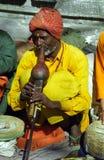 有魅力者尼泊尔pashupatinath蛇 库存图片