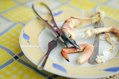 有鲜美龙虾爪的黄色菜盘和 免版税库存图片