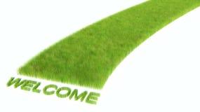 有鲜绿色的草的路。欢迎 库存图片