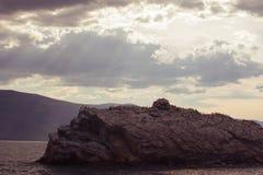有鸟的石海岛 免版税图库摄影