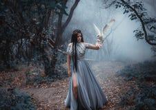 有鸟的神奇女巫 库存图片