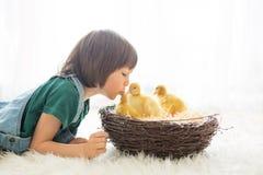 有鸭子春天的逗人喜爱的小男孩,一起使用 库存图片