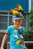 有鹦鹉的一个男孩在他的盖帽在梦想世界游乐园 曼谷泰国 图库摄影