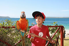 有鹦鹉的男孩 免版税库存照片