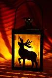 有麋的灯笼在黑暗 免版税库存图片