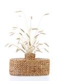 有麦子的耳朵的柳条花瓶 免版税图库摄影