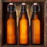 有麦子词根的啤酒瓶 库存照片