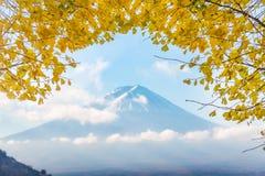 有黄色叶子银杏树的富士山在Kawaguchiko lak的早晨 库存照片