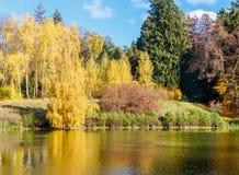 有黄色和红色叶子的秋天公园在池塘附近 免版税图库摄影