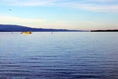 有黄色小船的瑞士人莱芒湖早晨叫mouette海鸥 免版税库存照片