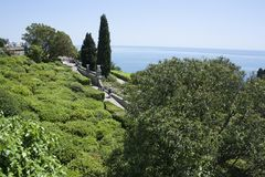 有黑海的美丽的绿色晴朗的庭院在背景中 免版税图库摄影