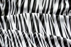 有黑白条纹的轻的典雅的透明气体披肩有斑马装饰品顶视图黑色颜色背景 库存图片