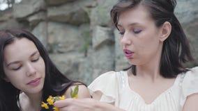 有黑色头发辫子花冠的两美女在与绿色植物的巨大的石头附近 影视素材