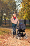 有婴儿车的一个微笑的母亲有步行在公园 库存图片