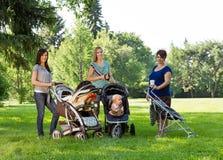 有婴儿车的母亲在公园 库存图片