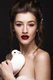 有经典构成、婚姻的发型、明亮的嘴唇和一只鸠的美丽的女孩在她的手上 秀丽表面 免版税图库摄影