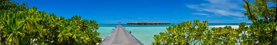 有水别墅在海洋和绿色灌木的惊人的美好的热带海滩全景在马尔代夫 免版税库存图片